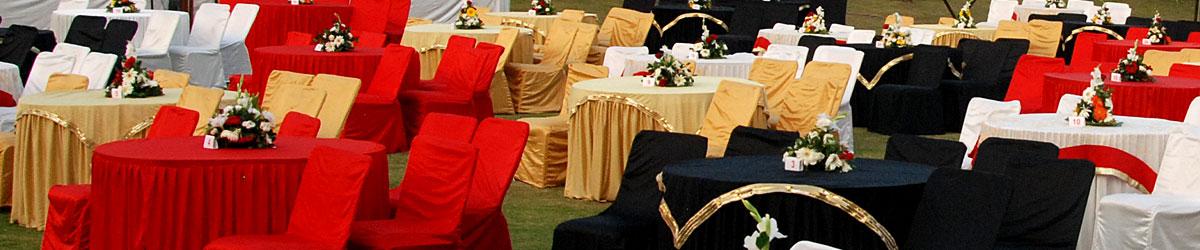 Best Wedding Planner Udaipur